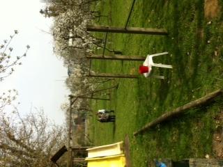 Spelen in tuin (11)